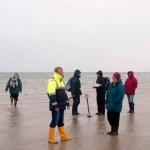 Widewater_surveyors