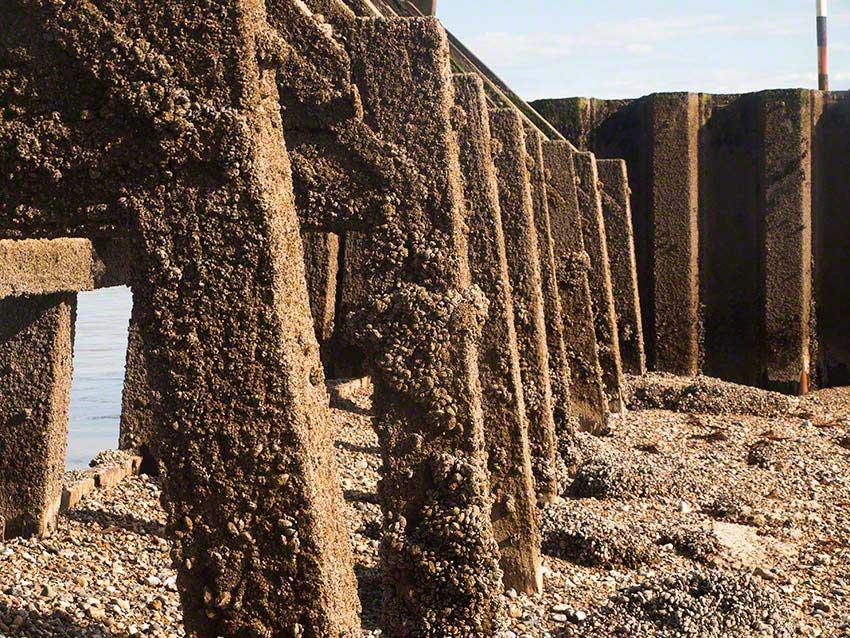 Littlehampton: towards end of harbour arm