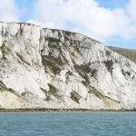 Watchful Beachy Head E of lighthouse