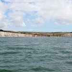 Watchful Birling Gap