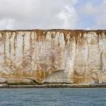 Watchful cliff W Cuckmere Haven