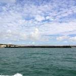 Watchful Newhaven harbour