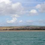 Watchful Seaford Bay