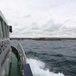 Watchful approaching Shoreham