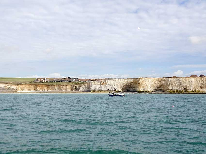 Watchful cliffs E of Saltdean