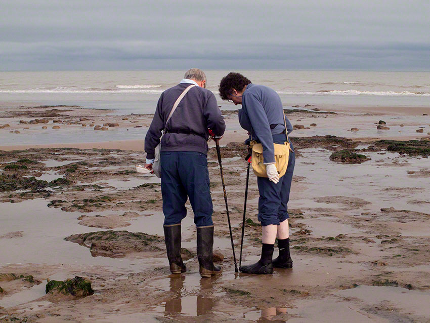 Seasearchers at work