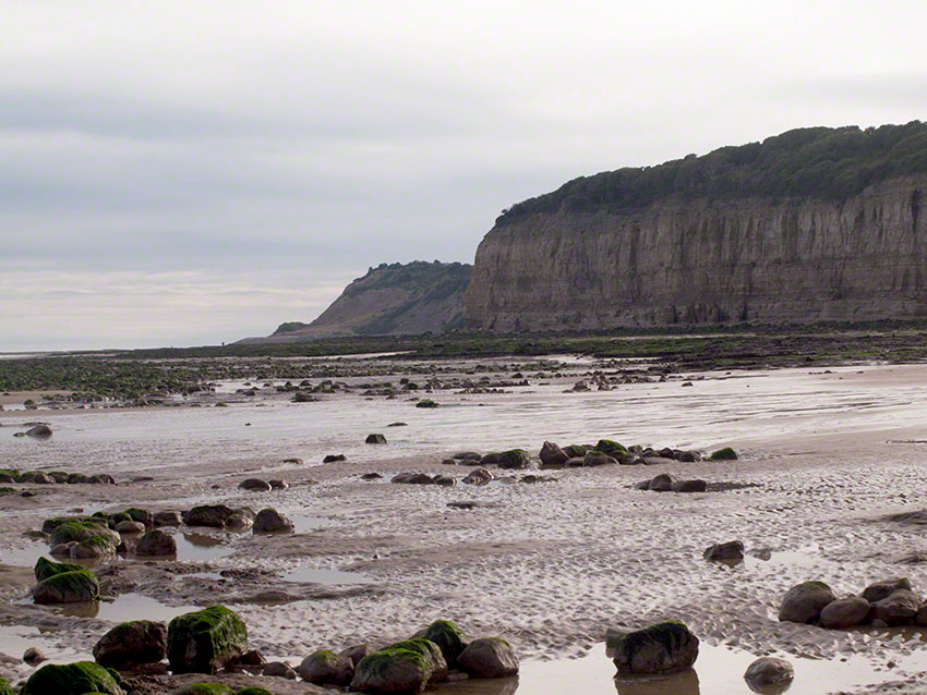 View west, cliffs and upper shore