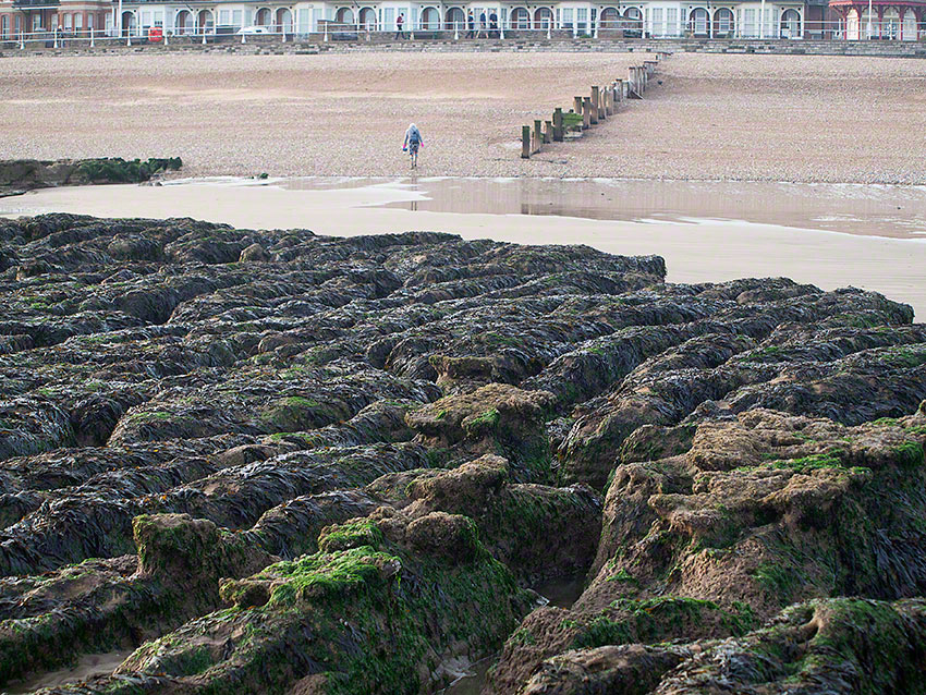 Bexhill, by sailing club, midshore