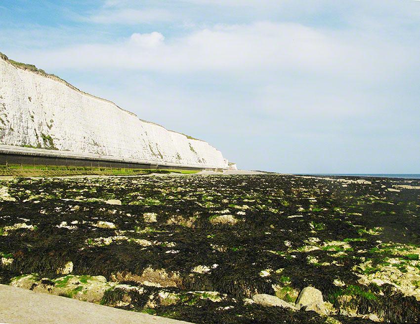 Saltdean beach East